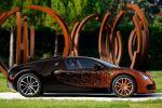Bugatti Veyron Grand Sport 8.0 W16 Cabrio Bernar Venet Formel Art Car Seite Ansicht